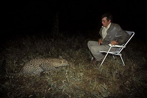 Michel Denis-Huot face à un léopard